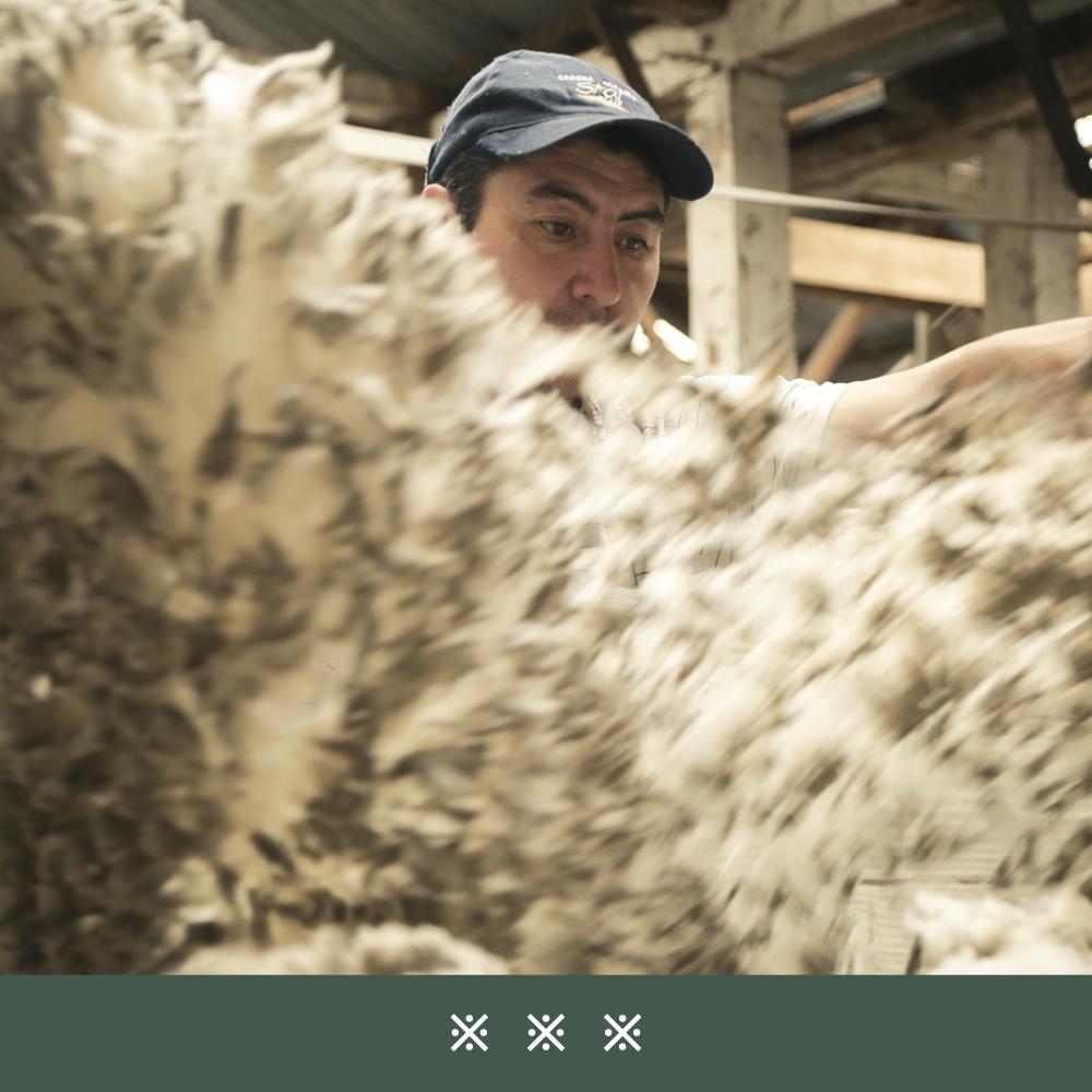 jak-pozyskuje-sie-welne-dormeuil-tonik-wool29